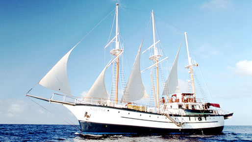 First Class 8 day Galapagos cruise & Machu Picchu Christmas Tour