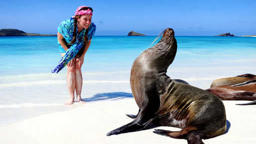 Christmas in Galapagos 2015 - 4 day cruise on the Millenium Yacht